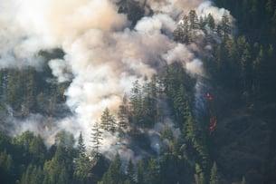 Wildfire Smoke_AdobeStock_1123004