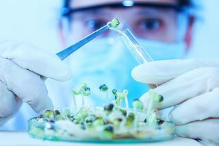 bigstock-Scientist-Working-scientists-W-131977817.jpg
